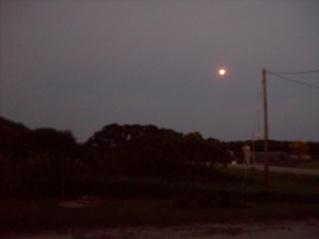 A Dark Night With Bright Moon